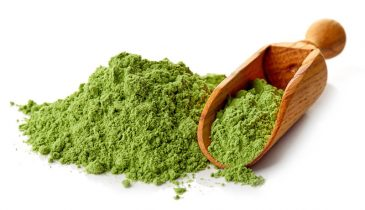 Kratom Powder: One of the Best Ways to Consume Kratom