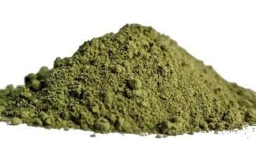 What Is Maeng Da Kratom? Find Out Its History, Effects, and Dosages