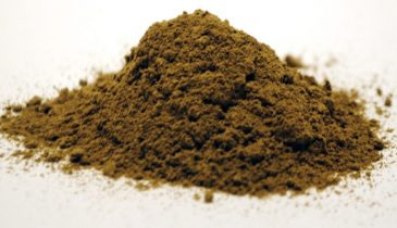 Why You Need to Try the Red Vein Thai Kratom Variety